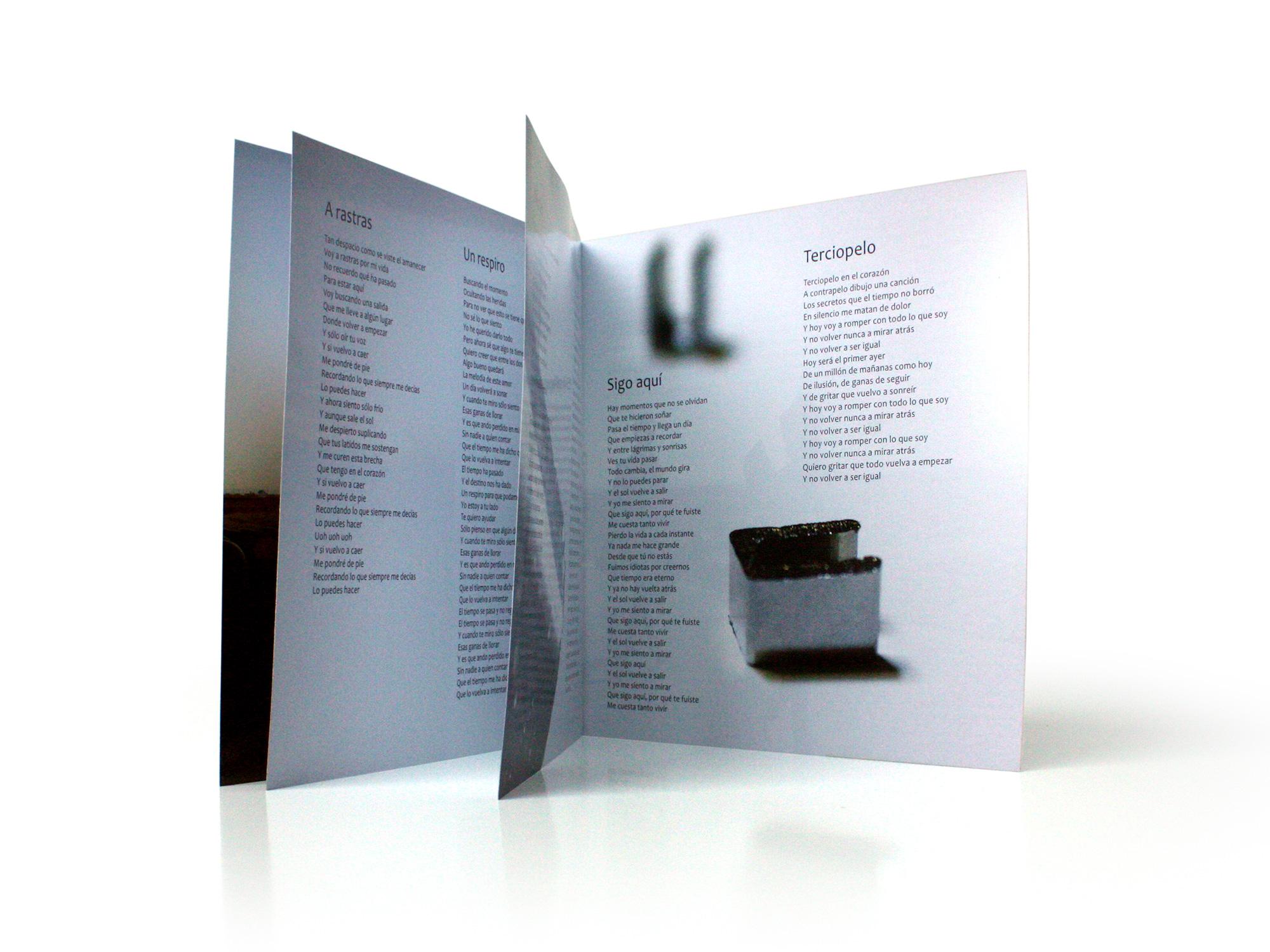 diseño librillo